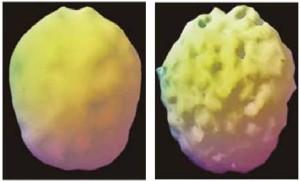 cervello-alcol